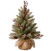 2' Dunhill® Fir Tree with Warm White LED Lights