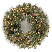 "24""  Glittery Pine Wreath w/Lights"