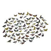Anna Griffin® Favorite 3D Birds/Butterfly Embellishments