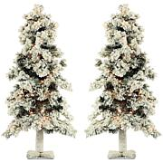 Set of Snowy Alpine Trees with Clear Lights
