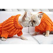 Isabella Cane Knit Dog Sweater - Orange XS