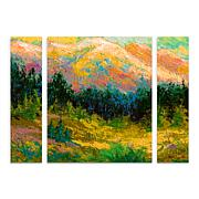 """Marion Rose """"Summer High Country"""" Panel Art - 24"""" x 32"""""""