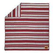 Officially Licensed NFL Acrylic Stripe Throw Blanket