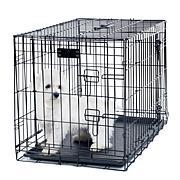 "PETMAKER 2-Door Foldable Dog Crate - 24"" x 19"""