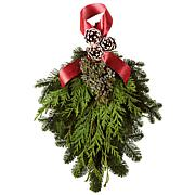 Van Zyverden Fresh Cut Pacific Northwest Evergreen Noble Door Greeter