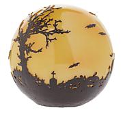 Wind & Weather Lighted Halloween Witch Globe