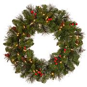 "Winter Lane 24""  Crestwood Spruce Wreath w/Lights"