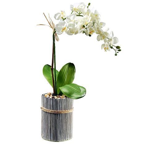 """20"""" Garden Accents Artificial Potted Orchid"""