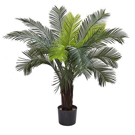 3 Ft. Cycas Tree with 15 Leaves