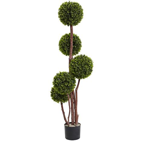 4 Ft. Boxwood Five Ball Topiary