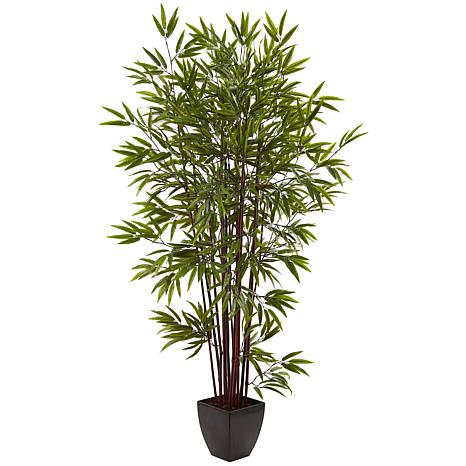 6 Ft. Bamboo Silk Tree with Planter