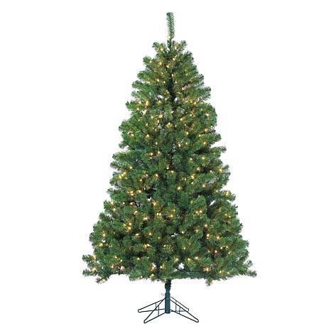 7' Pre-Lit Montana Pine Tree - 500 Clear Incandescent Lights