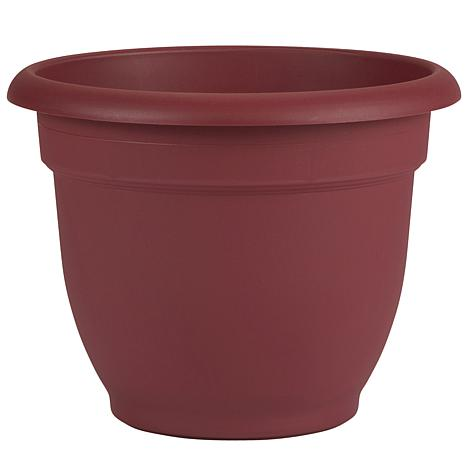 Ariana Self Watering Planter 10 in