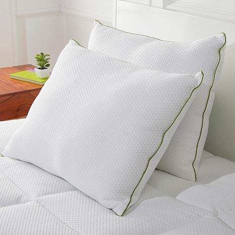 Concierge Collection 2-pack Rayon from Bamboo Standard Pillows