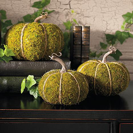Frontgate Set of 3 Mossy Pumpkins
