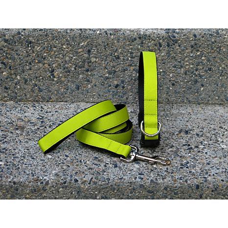 Isabella Cane Medium Chartreuse Collar-Leash Set