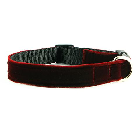 Isabella Cane Red Velvet Couture Dog Collar - Small