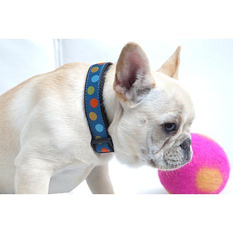 Isabella Cane Woven Ribbon Dog Collar - Blue Dots XL