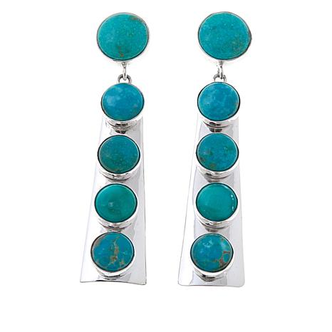 Jay King Sonoran Blue Turquoise Drop Earrings