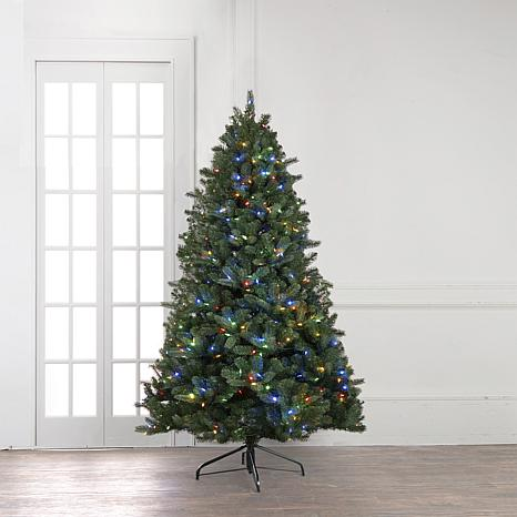 joy 5 pre lit forever fragrant holiday scented christmas tree - 5 Christmas Tree