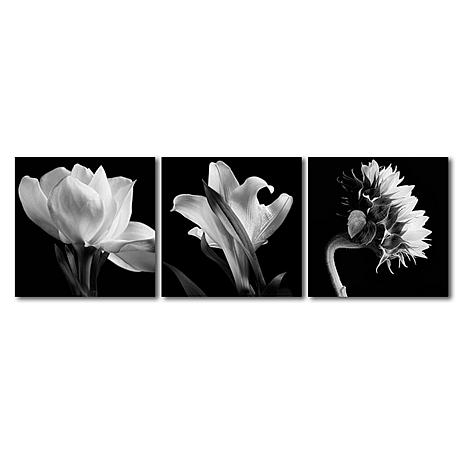 Michael Harrison 'Flower Triptych' Art Collection