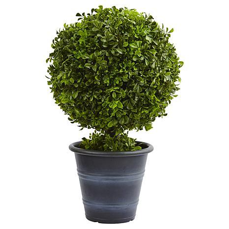 "Nearly Natural 23"" Boxwood Ball Topiary"