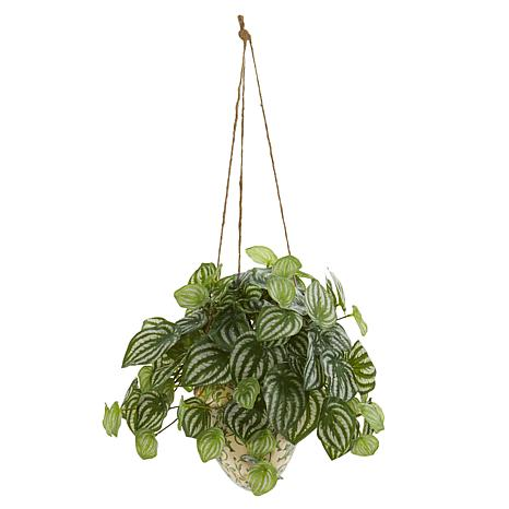 Nearly Natural 24 in.Watermelon Peperomia Artificial Plant in Hangi...