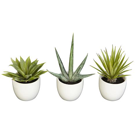 Set of 3 faux succulent plants in planter. How to decorate or style your entry way.
