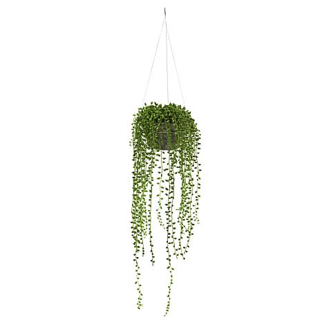 Nearly Natural Silk String of Pearl Hanging Plant - 21""