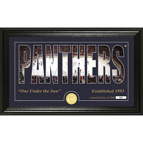 NHL Silhouette Panoramic Bronze Coin Photo Mint - Florida Panthers