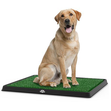 Petmaker Puppy Potty Trainer The Indoor Restroom For