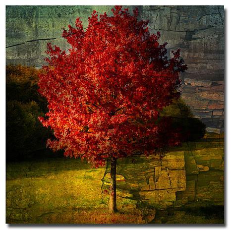 """Philippe Sainte-Laudy """"Autumn Red"""" Print"""