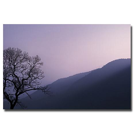 "Philippe Sainte-Laudy Large ""Purple Hours"" Print"