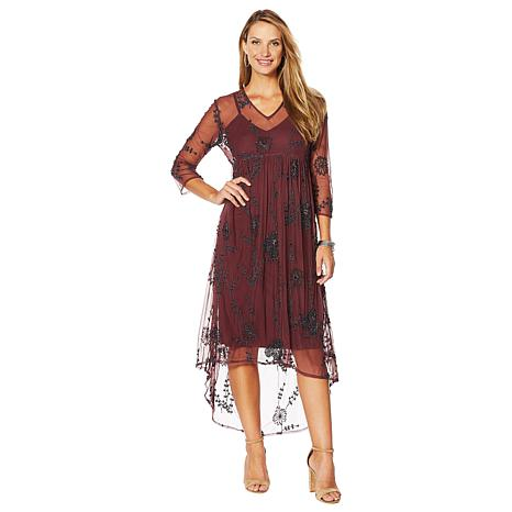 Sheryl Crow Embroidered Mesh Dress