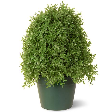 Winter Lane 1-1/4' Artificial Topiary Boxwood Tree