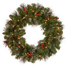 "24""  Crestwood Spruce Wreath w/Lights"