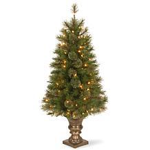 4' Atlanta Spruce Entrance Tree w/Lights