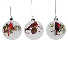 """""""As Is"""" Winter Lane Oversized LED Ornaments with Timer - Set of 3"""