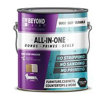 Beyond Paint® All-in-One Refinishing Gallon