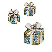 """Heidi Daus """"Pavé Package"""" Crystal Pin and Earrings Set"""