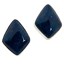 Jay King Sterling Silver Gemstone Stud Earrings