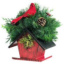 Van Zyverden Live Fresh Cut Birdhouse Centerpiece with Cardinal