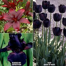VanZyverden Color Your Garden Black Collection 23-piece Bulb Set