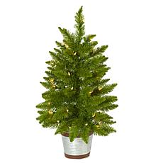 2 ft. Providence Pine Artificial Christmas Tree in Decorative Plant...