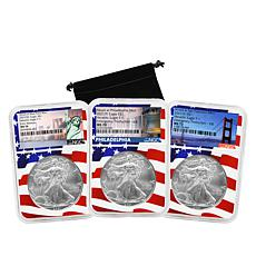 2021 NGC MS70 Early Releases Silver Eagle 3-Coin Set with Flag Cores