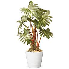 "21"" Garden Accents Artificial Philodendron Flower"
