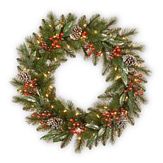 "24"" Frosted Pine Berry Collection Pre-Lit Wreath"