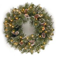 "24""  Glittery Pine Wreath w/Lights"