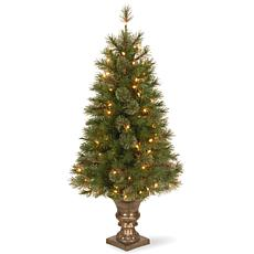 4 ft. Atlanta Spruce Entrance Tree with Clear Lights