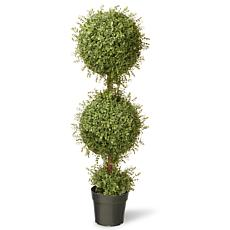 4' Mini Tea Leaf 2-Ball Tree